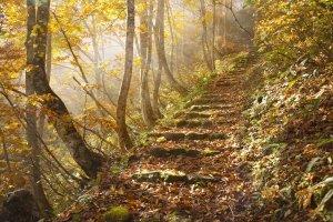 michael-yamashita-landscape-travel (1)