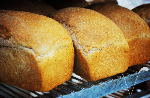 04 smell Naked-Bread-V-Tag