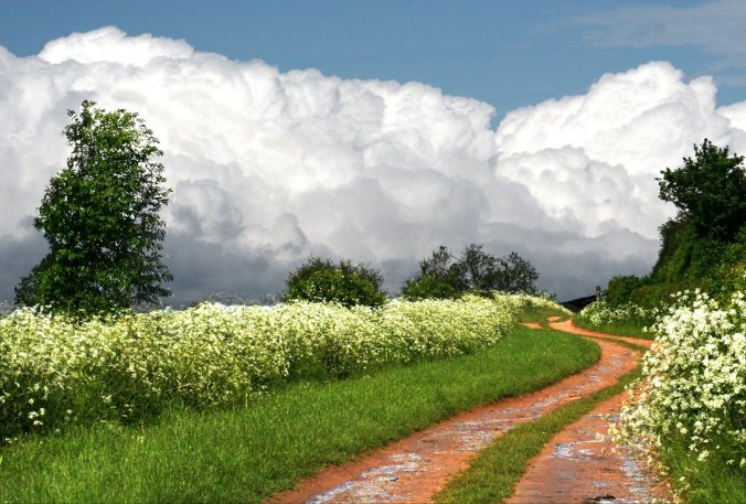 A_trail_into_the_clouds_by_endoftherainbow