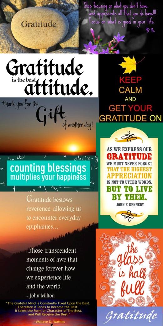 gratitude montage