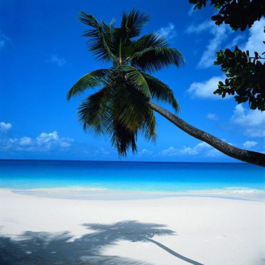 three Cancun_Stunning-landscape_3232